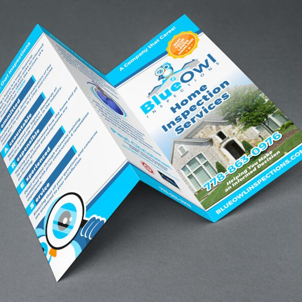 Blue owl brochure design
