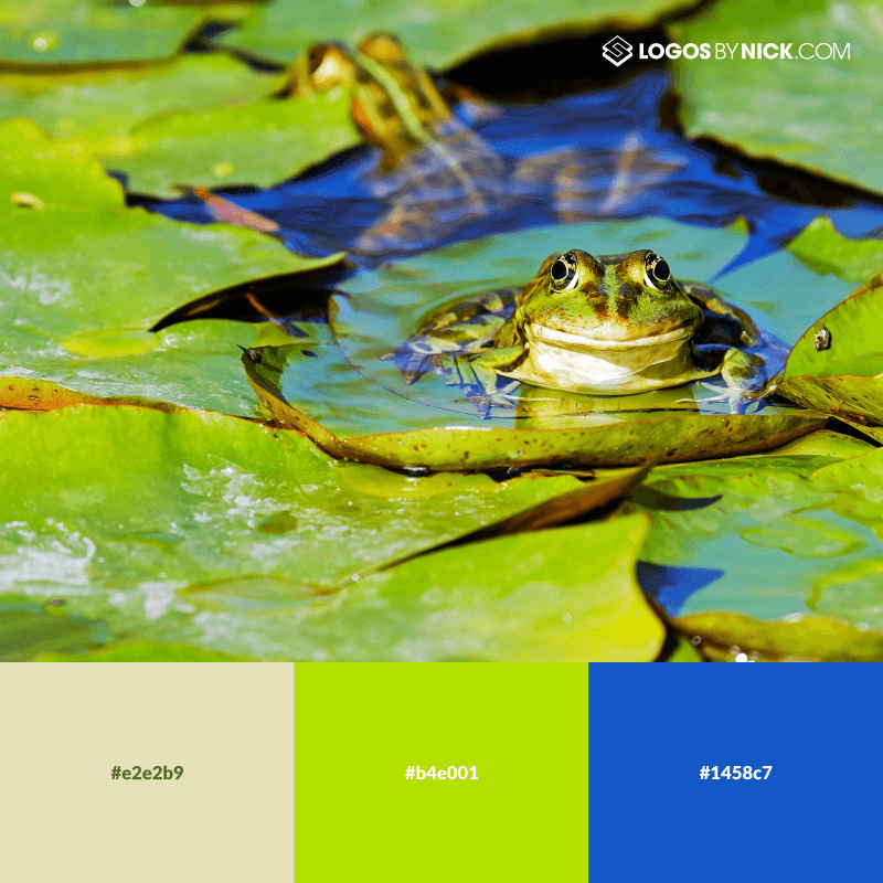 Lily pad colors