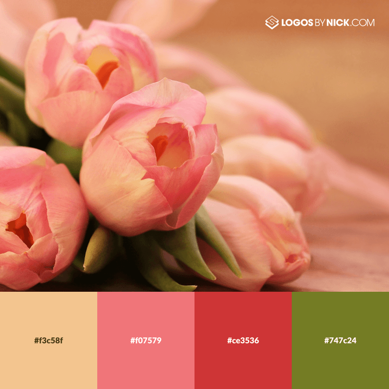 14 Nature Color Palettes with HEX Codes | Design Inspiration
