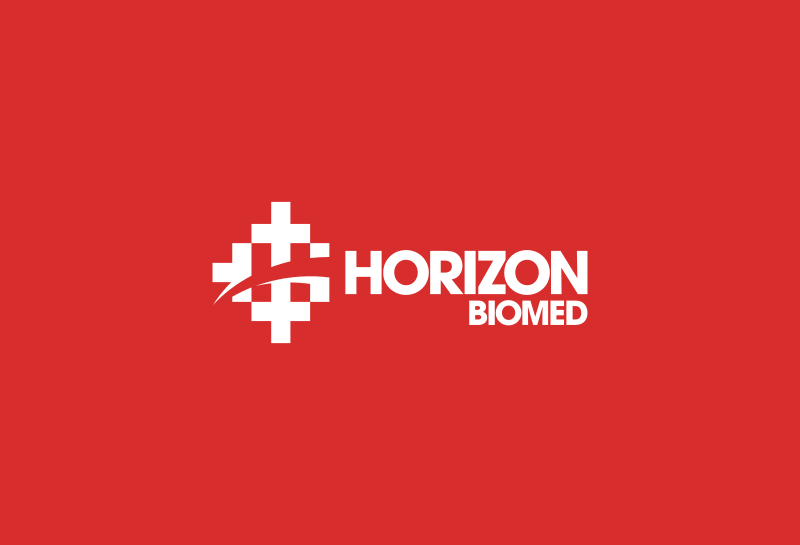 Horizon logo with colors inverted