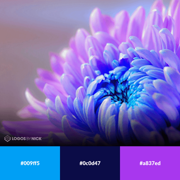 Color palette with blue and purple