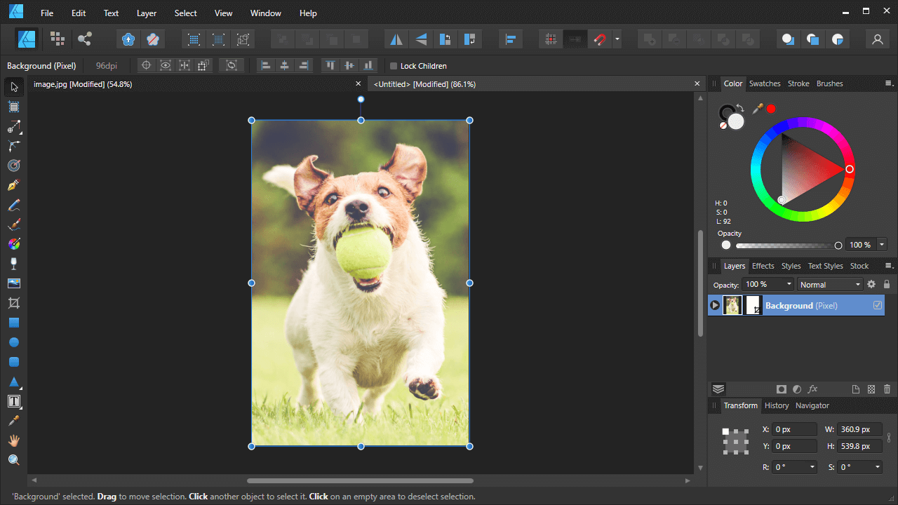 Cropped image in a new document