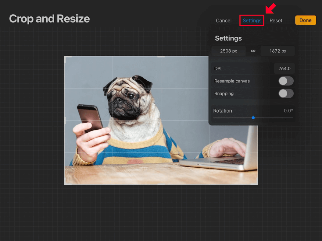 Crop and Resize settings